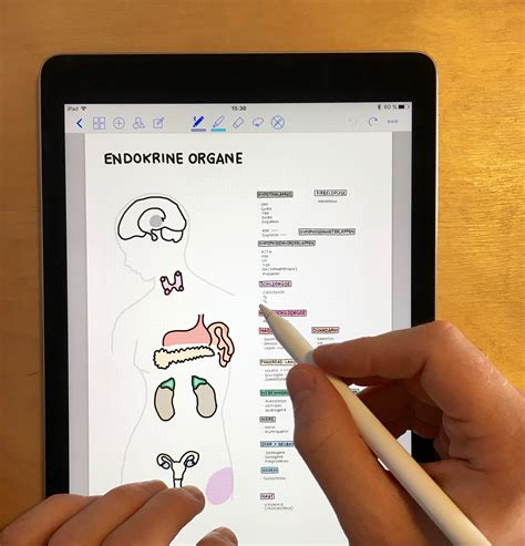5 Advantages of Taking Digital Handwritten Notes | by
