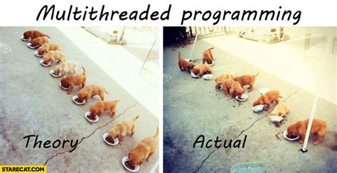 Multithreaded programming: theory vs actual puppies eating