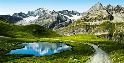 The Swiss National Park celebrates its 100th anniversary